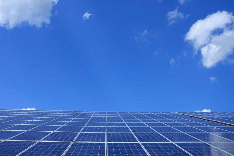 Renogy Solar Panels Review
